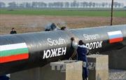 Nga ngừng dự án 'Dòng chảy Phương Nam' vì lý do pháp lý