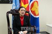 Việt Nam chia sẻ quan điểm về mối liên hệ giữa hòa bình, an ninh và phát triển