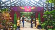 Khu bảo tồn chim lớn nhất châu Á tại Singapore