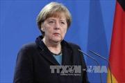 Bà Merkel tuyên bố thúc đẩy đàm phán TTIP