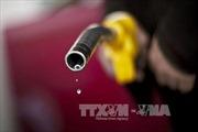 Giá xăng dầu tại Mỹ rẻ nhất trong 6 năm