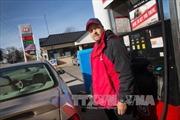 Tổng Thư ký OPEC nhận định giá dầu sớm phục hồi