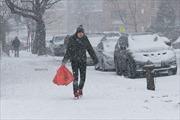 Nước Mỹ trong cơn  bão tuyết lịch sử