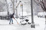 Mỹ: Bão tuyết hoành hành tại Masachusetts