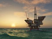 Giá dầu mỏ tiếp tục biến động
