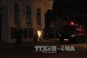 Cảnh sát Đan Mạch tiêu diệt thủ phạm 2 vụ xả súng