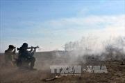 Mỹ, Anh, Pháp, Đức, Italy thảo luận về Ukraine