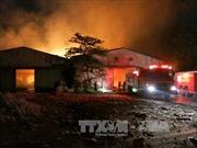 Bình Dương: Dập tắt hoàn toàn đám cháy xưởng bông