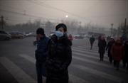 Trung Quốc từ chối nhập than anthracite của Triều Tiên