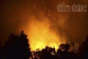 Cháy rừng tái sinh đe dọa hàng chục hộ dân