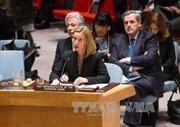 EU sẽ đàm phán riêng với Iran về hạt nhân