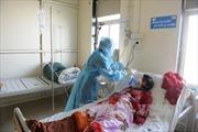 Số người tử vong do cúm lợn tăng mạnh ở Ấn Độ