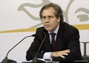 OAS bầu Tổng Thư ký mới