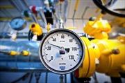Ukraine sẽ ngừng mua khí đốt của Nga