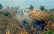 Cháy rừng thông trên núi Hàm Rồng