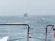 Lai dắt tàu khách trôi dạt về đảo Phú Quý