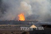 Giao tranh ác liệt tiếp diễn tại Yemen