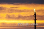 Giá dầu thô đạt mức cao nhất kể từ đầu năm 2015
