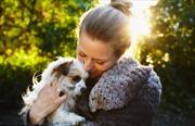 Giải mã 'hormone tình cảm' giữa người và chó