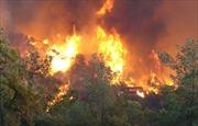 Cao Bằng: Liên tiếp cháy rừng vì đốt vàng mã