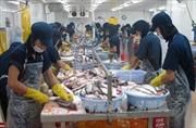 Tọa đàm về xuất khẩu bền vững cá da trơn của Việt Nam vào EU