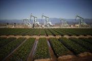 Giá dầu, vàng thế giới chịu sức ép