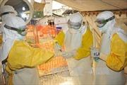 Một y tá Italy dương tính với virus Ebola