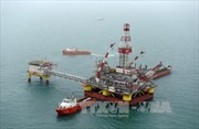 Giá dầu và USD diễn biến trái chiều