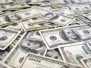 Giá đô la Mỹ lại tăng mạnh