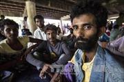 LHQ thúc các nước Đông Nam Á giúp người nhập cư