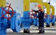 Ukraine trả trước 32 triệu USD tiền khí đốt của Nga