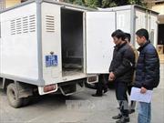 Xử nghiêm 2 đối tượng cướp giật tài sản tại vùng biên Hà Giang