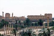 Quân đội Syria chuẩn bị phản công giành lại Palmyra