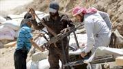 Syria: Phiến quân chiếm thành phố cuối cùng tại tỉnh Idlib