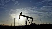 Giá dầu giảm sâu trước thềm họp OPEC
