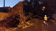 Hà Nội chỉ đạo khắc phục thiệt hại trận mưa dông