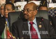 ICC đề nghị Nam Phi bắt giữ Tổng thống Sudan