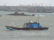 Đông Bắc Bộ, Bắc Trung Bộ theo dõi chặt chẽ để ứng phó bão số 1