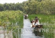 Phát triển bền vững du lịch nông nghiệp - Bài 1