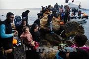 Tây Ban Nha, Italy cứu hàng trăm người di cư trên biển