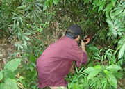 Cảnh báo việc dùng súng tự chế đi săn gây chết người