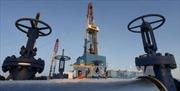 Giá dầu giảm gần như suốt tuần