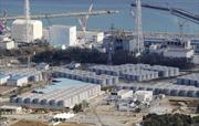 Đóng băng đất quanh lò phản ứng Fukushima