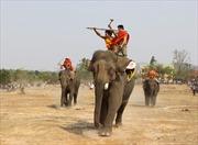 Đặc sắc Hội voi truyền thống huyện Buôn Đôn