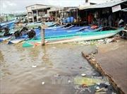 Quyết liệt xác định nguyên nhân cá chết hàng loạt ở miền Trung