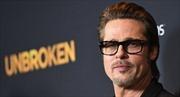 Điểm gì chung giữa Brad Pitt và con tò vò?