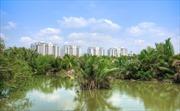 Công ty Đại Quang Minh: Hoàn thành bốn công trình lớn vào năm 2018