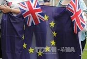 Rắc rối quanh việc thực hiện Điều 50 Hiệp ước Lisbon