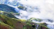 Bồng bềnh mây trắng đỉnh Tà Xùa