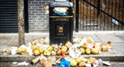 Đến em vua cũng bị phạt nếu vứt rác sai